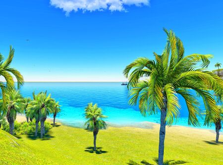 Beach and palms Stock Photo - 14324812
