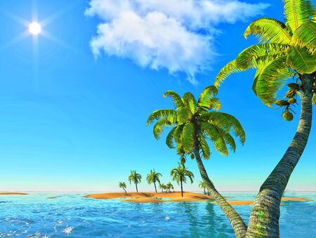 island and palms Stock Photo - 14324733