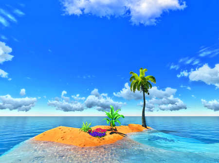 tropical island and palm photo