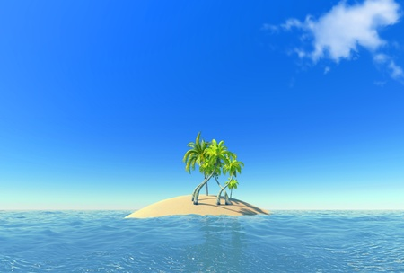 island and palms photo
