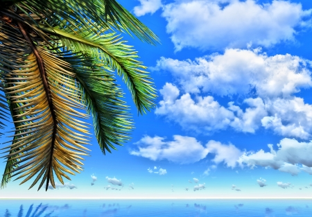 Palm brunch and ocean Stock Photo - 14324711