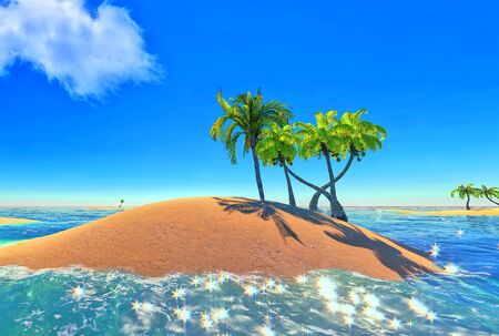 islands and palms photo
