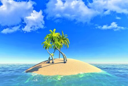 tropical island and palms photo