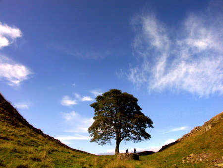 Two hikers under tree in Sycamore Gap, Hadrians Wall, Northumberland photo