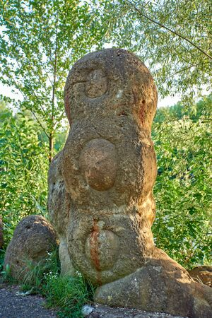 Petrified ammonite, which looks like an alien resident, against the background of the forest Banco de Imagens