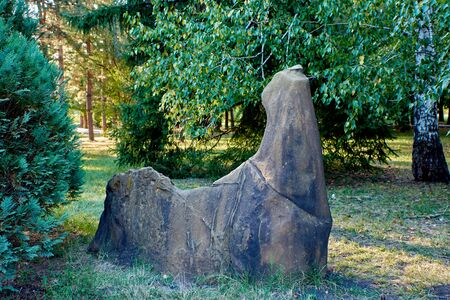 Horse-like stone on green grass, on a background of trees Banco de Imagens