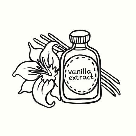 Doodle Vanilleextrakt in der Flasche auf weißem Hintergrund. Natürliches Vanille-Gewürz. Exotisches asiatisches Gewürz für Dessert- oder Parfümindustrie-Vektorillustration. Vektorgrafik