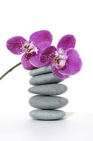 Pyramid of stones and beauty orchid photo