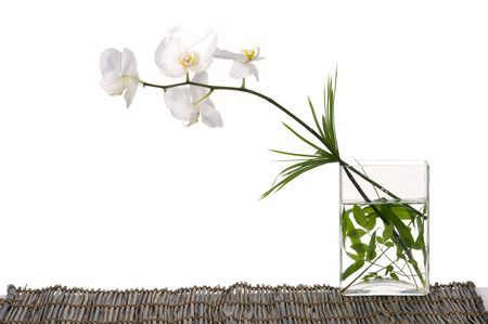 Beautiful orchid with green leaf in vase on mat