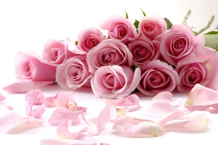 pink roses: bouquet of beautiful flowers with petals Stock Photo