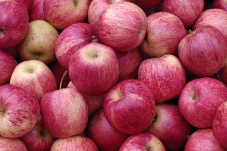 빨간 사과 배경