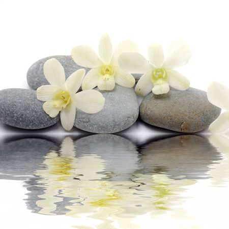 reflection of Zen stones with white orchid photo