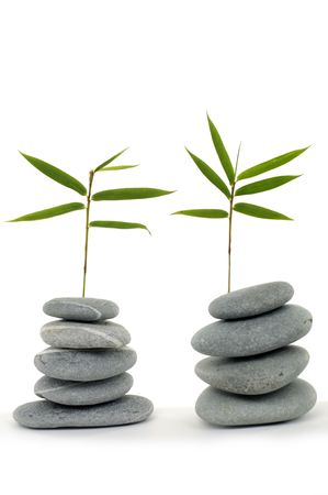 Fresh bamboo leaves with zen stone Stock Photo - 6057926
