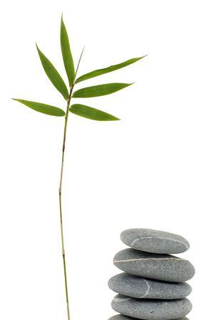 Thin bamboo with balanced pebles Stock Photo - 6057923