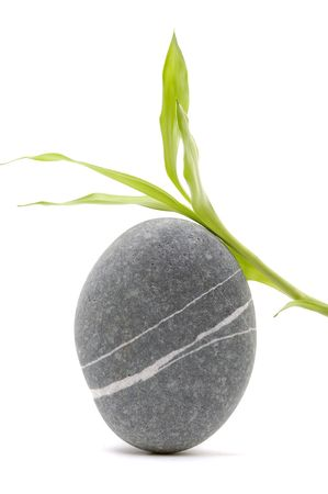 Zen stone with bamboo  Stock Photo - 6058029