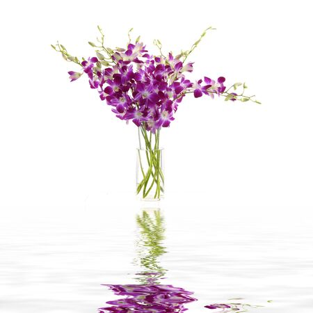 Bowl of orchid with reflection photo