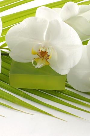 frond: soap with orchid on palm leaf Stock Photo