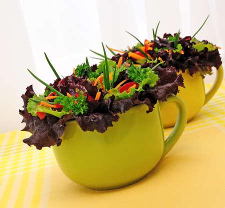 lactuca sativa: Salad of Lactuca sativa, carrot, sweet pepper (bell)