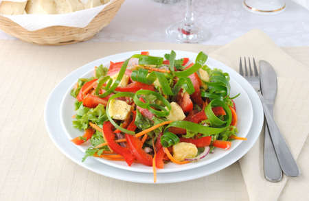 Summer vegetable salad with grilled cheese and onion in a serpentine Stock Photo - 10367717