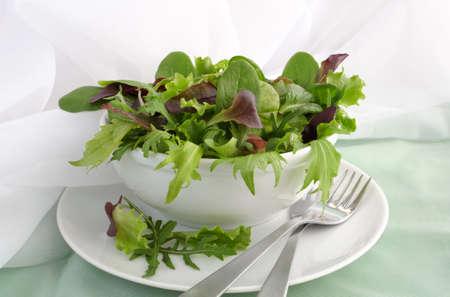 Mezcla de diferentes variedades de espinaca lechuga, acelga, Biondi, r�cula, lechuga Foto de archivo - 12587700