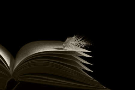 angel feather lying on the pages of an open book Фото со стока - 19715221