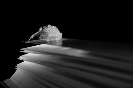 wakening: angel feather lying on the pages of an open book