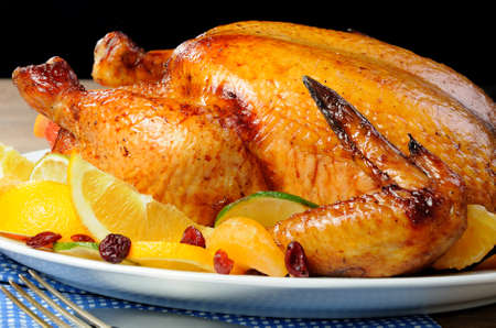 elevenses: Baked chicken with slices of orange, lime, tangerine and cranberry Stock Photo