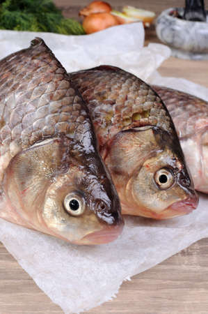 crucian carp: fresh crucian carp stacked on the paper table close up