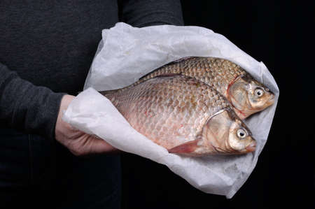 elevenses: Man holding fresh crucian carp close-up on a folded paper Stock Photo