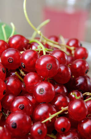 lunch hour: A handful of ripe red currants closeup Stock Photo
