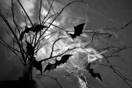 decor with bats on the branches shrouded in cobwebs in the dark Halloween