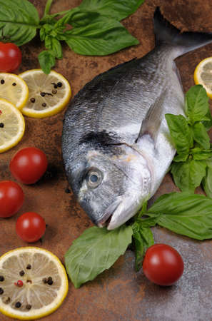 gilthead bream: Raw fish Dorado with basil, lemon slices, cherry tomatoes on the table