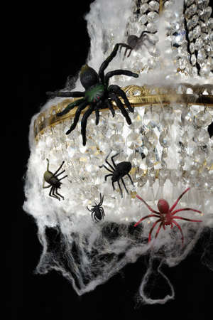 Spiders on the chandelier a tangled web of a decoration for Halloween
