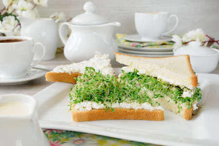 A sandwich of tender, juicy sprouted alfalfa sprouts with soft ricotta and a cup of coffee or tea, which may be better for a break Stock Photo