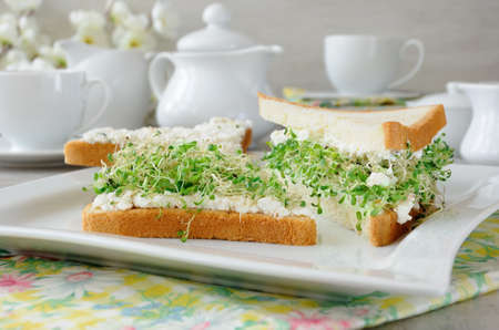 A sandwich of tender, juicy sprouted alfalfa sprouts with soft ricotta and a cup of coffee or tea, which may be better for a break Reklamní fotografie