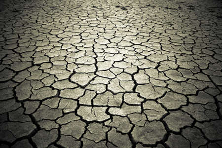 The soil in the fissures appeared on the long-term heat Stock Photo - 7022295