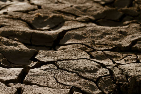 Cracked by the heat long lifeless soil Stock Photo - 8829742