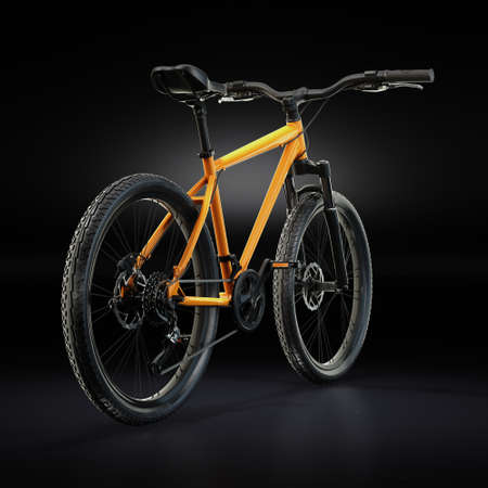 3D Rendering Mountain Bike on a Black Background