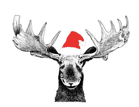 santa moose: Funny Christmas Moose with Santa Claus hat