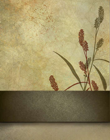 stripe: brown and beige background with floral design and stripe for adding your own text