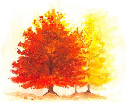 hojas parra: árbol de otoño pintura a la acuarela, el paisaje de un árbol caída de arce o roble de color naranja vibrante brillante, los colores amarillo y rojo para las hojas, follaje, paisaje de otoño Foto de archivo