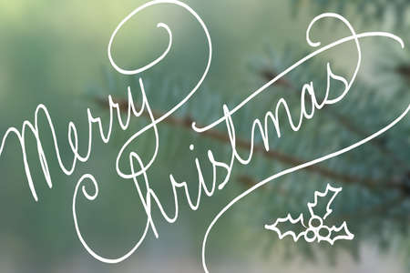 pine tree needles: merry Christmas typography in hand written cursive handwriting, Merry Christmas text on blurred blue spruce pine tree needles in soft outdoor nature background Stock Photo