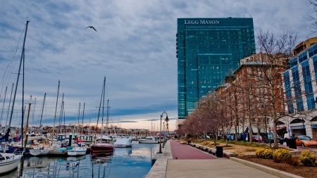 Marina and the Legg Mason Building, Baltimore, Maryland
