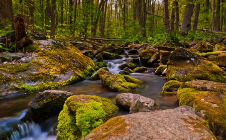Cascades on South River, Shenandoah National Park, Virginia   photo