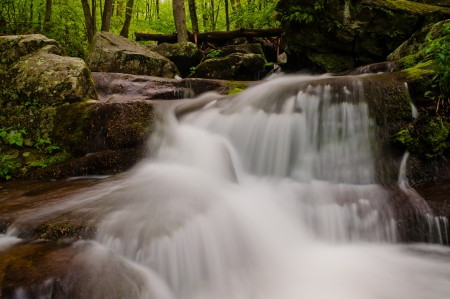 Small waterfall on Hogcamp Branch, Shenandoah National Park, Virginia  photo