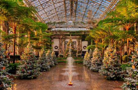 Christmas trees and fountains in the Conservatory, Longwoods Gardens, PA