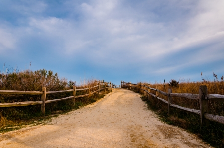 Path over sand dunes to the beach, Cape May, New Jersey. 免版税图像