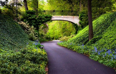 Woodland path under a bridge at Longwood Gardens, Pennsylvania.