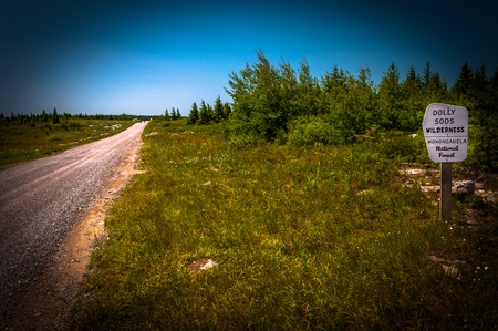 high plateau: Dirt road through the high plateau of Dolly Sods Wilderness, Monongahela National Forest, West Virginia Stock Photo