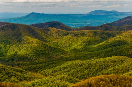 stomy: Spring colors in the Appalachian Mountains, seen from Blackrock Summit in Shenandoah National Park, Virginia.